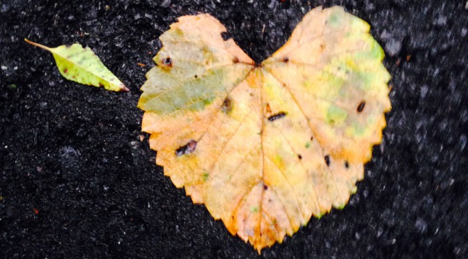 Home Heart Leaf